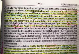 Ezekiel 36:25-29   ESV