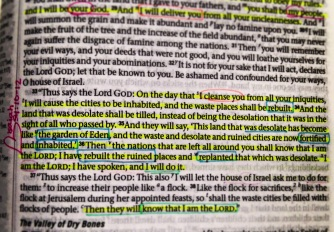 Ezekiel 36:33-36   ESV