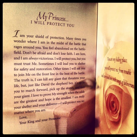 His Princess: Love Letters from Your King | Sheri Rose Shepherd